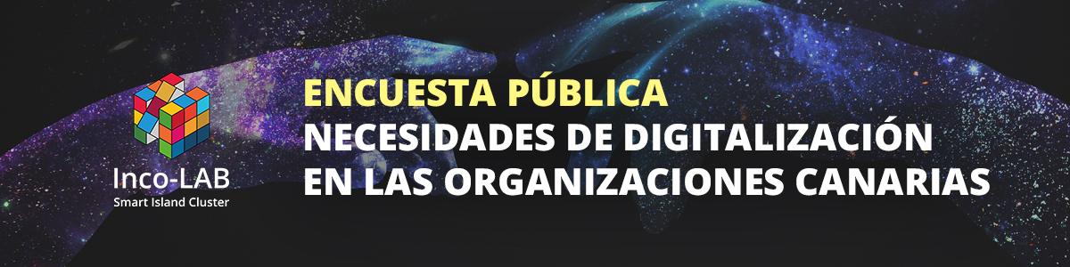 Encuesta pública de necesidades de digitalización Canarias