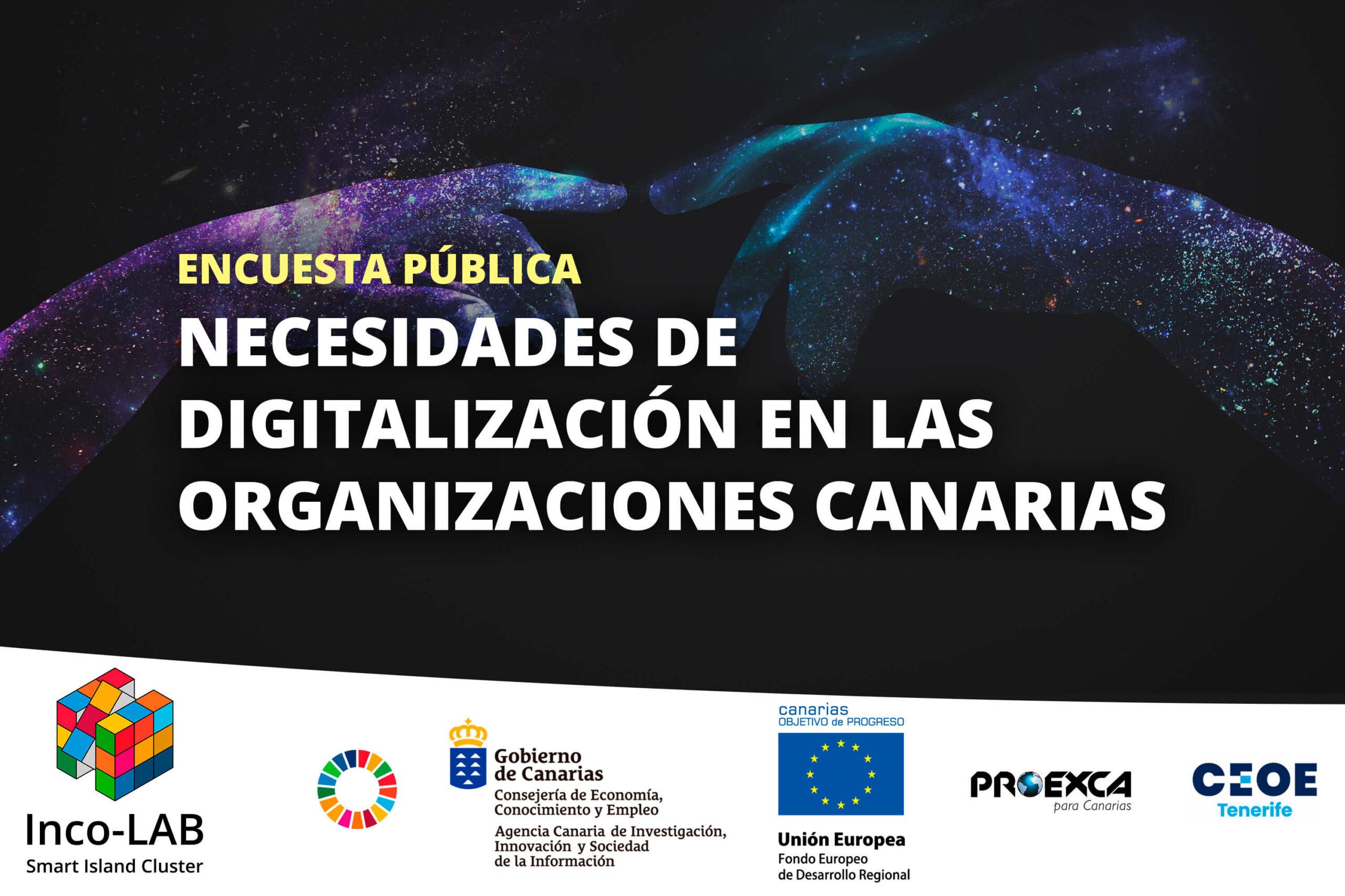 Encuesta pública para el Estudio de las necesidades de digitalización en las organizaciones canarias 2021